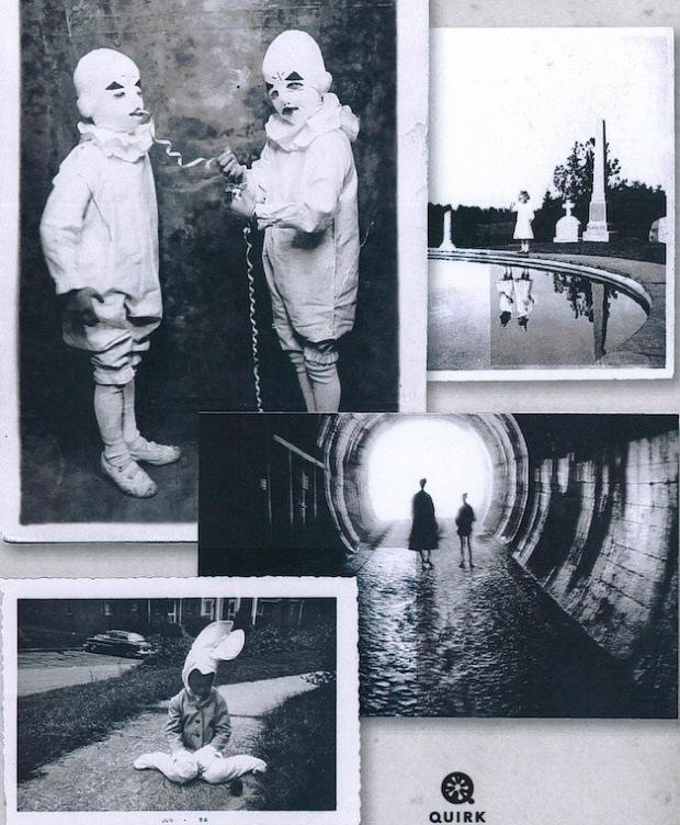 peregrine-fotos-2