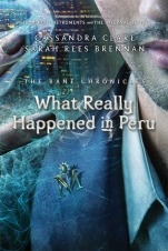 What Really Happened in Peru Book Cover.jpg
